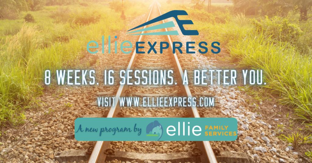 EE Website Banner for EFS